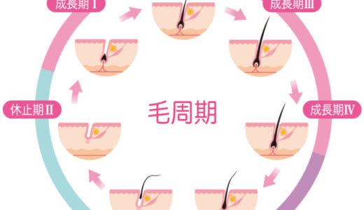 毛周期をよく知って、脱毛を効果的に行う方法!